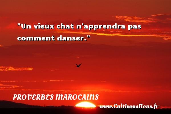 Proverbes marocains - Proverbes fun - Proverbes philosophiques - Un vieux chat n apprendra pas comment danser. Un Proverbe marocain PROVERBES MAROCAINS