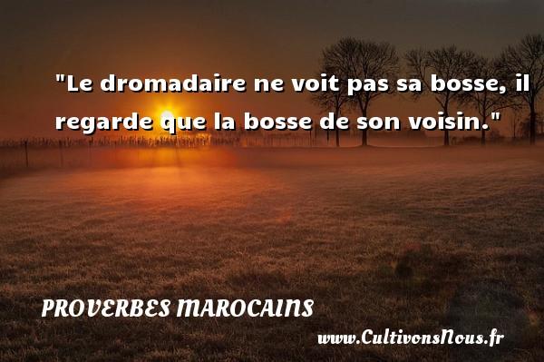 Proverbes marocains - Proverbes philosophiques - Le dromadaire ne voit pas sa bosse, il regarde que la bosse de son voisin. Un Proverbe marocain PROVERBES MAROCAINS