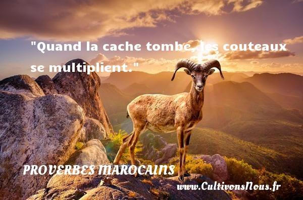 Quand la cache tombe, les couteaux se multiplient. Un Proverbe marocain PROVERBES MAROCAINS - Proverbes philosophiques