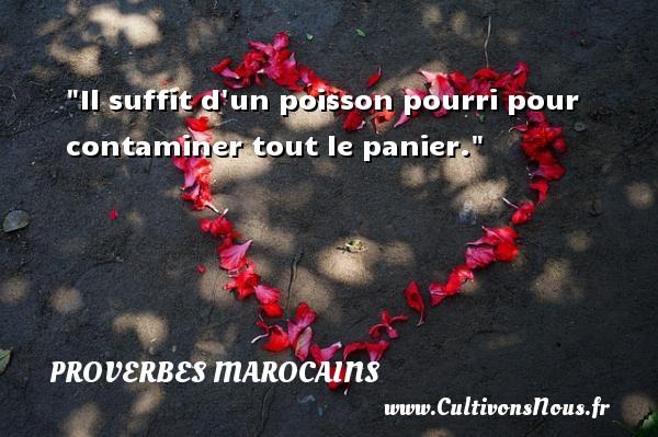 Il suffit d un poisson pourri pour contaminer tout le panier. Un Proverbe marocain PROVERBES MAROCAINS - Proverbes philosophiques