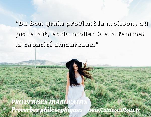 Du bon grain provient la moisson, du pis le lait, et du mollet (de la femme) la capacité amoureuse. Un Proverbe marocain PROVERBES MAROCAINS - Proverbes philosophiques
