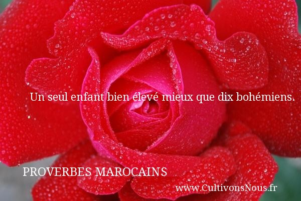 Un seul enfant bien élevé mieux que dix bohémiens. Un Proverbe marocain PROVERBES MAROCAINS - Proverbes fun - Proverbes philosophiques