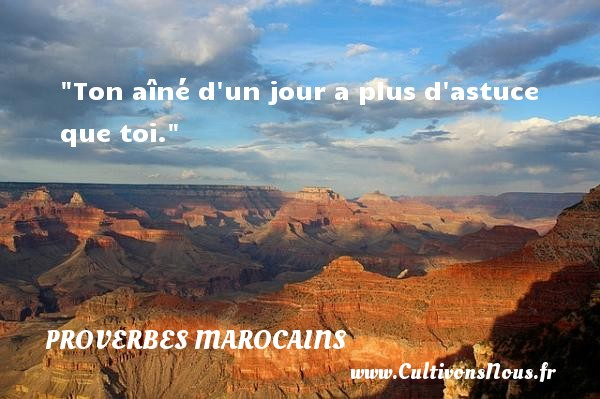 Proverbes marocains - Proverbes philosophiques - Ton aîné d un jour a plus d astuce que toi. Un Proverbe marocain PROVERBES MAROCAINS