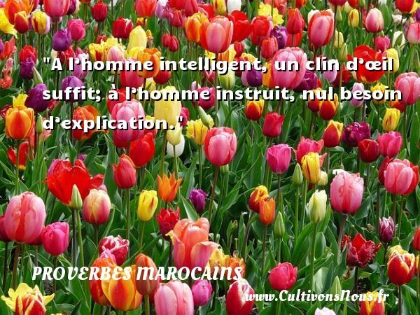 Proverbes marocains - A l'homme intelligent, un clin d'œil suffit; à l'homme instruit, nul besoin d'explication. Un Proverbe marocain PROVERBES MAROCAINS