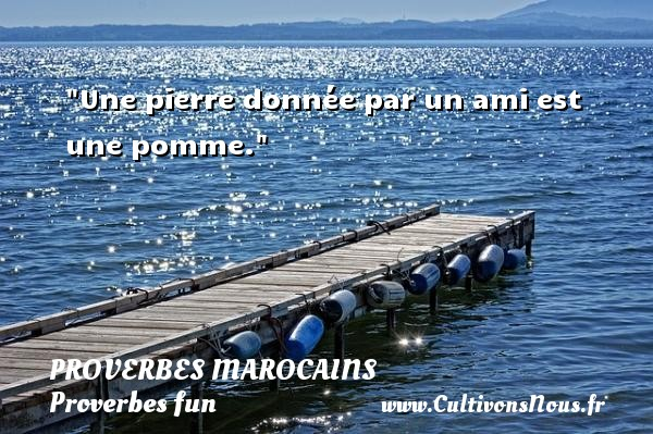 Une pierre donnée par un ami est une pomme. Un Proverbe marocain PROVERBES MAROCAINS - Proverbes fun - Proverbes philosophiques