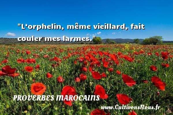Proverbes marocains - Proverbes philosophiques - L'orphelin, même vieillard, fait couler mes larmes. Un Proverbe marocain PROVERBES MAROCAINS