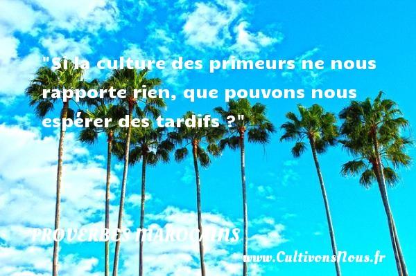 Proverbes marocains - Proverbes philosophiques - Si la culture des primeurs ne nous rapporte rien, que pouvons nous espérer des tardifs ? Un Proverbe marocain PROVERBES MAROCAINS