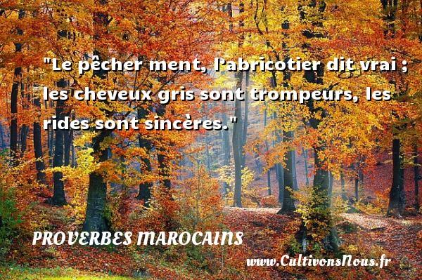 Proverbes marocains - Proverbes philosophiques - Le pêcher ment, l'abricotier dit vrai ; les cheveux gris sont trompeurs, les rides sont sincères. Un Proverbe marocain PROVERBES MAROCAINS