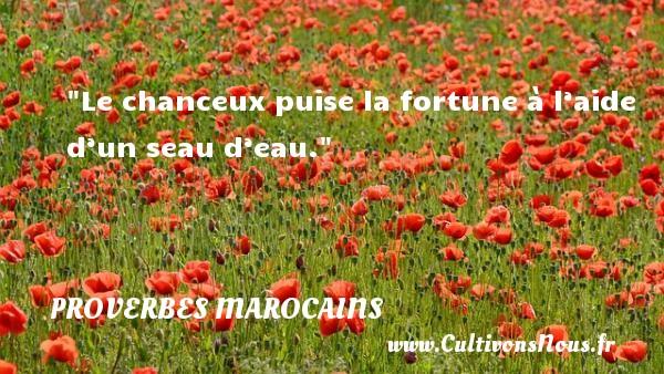 Le chanceux puise la fortune à l'aide d'un seau d'eau. Un Proverbe marocain PROVERBES MAROCAINS - Proverbes philosophiques
