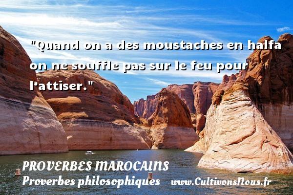 Quand on a des moustaches en halfa on ne souffle pas sur le feu pour l'attiser. Un Proverbe marocain PROVERBES MAROCAINS - Proverbes philosophiques
