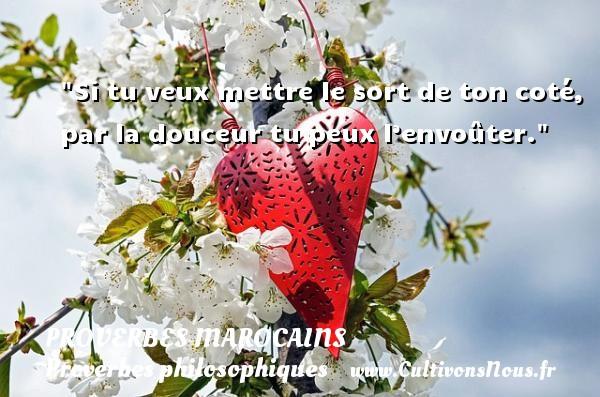 Proverbes marocains - Proverbes philosophiques - Si tu veux mettre le sort de ton coté, par la douceur tu peux l'envoûter. Un Proverbe marocain PROVERBES MAROCAINS
