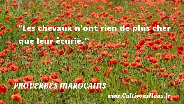 Proverbes marocains - Les chevaux n ont rien de plus cher que leur écurie. Un Proverbe marocain PROVERBES MAROCAINS