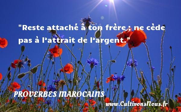 Proverbes marocains - Reste attaché à ton frère ; ne cède pas à l'attrait de l'argent. Un Proverbe marocain PROVERBES MAROCAINS