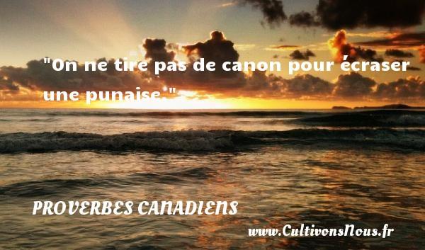 On ne tire pas de canon pour écraser une punaise. Un Proverbe canadien PROVERBES CANADIENS - Proverbes Drôles