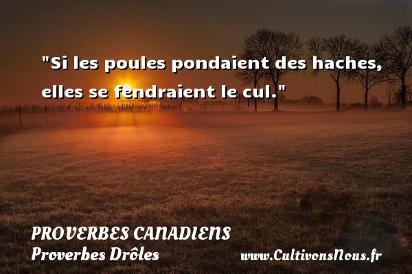 Si les poules pondaient des haches, elles se fendraient le cul. Un Proverbe canadien PROVERBES CANADIENS - Proverbes Drôles