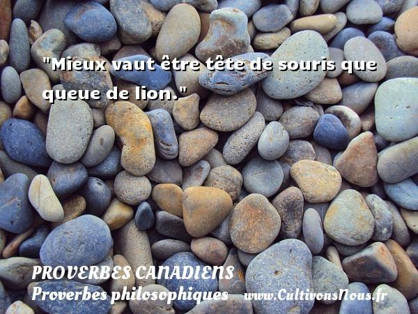 Mieux vaut être tête de souris que queue de lion. Un Proverbe canadien PROVERBES CANADIENS - Proverbes philosophiques