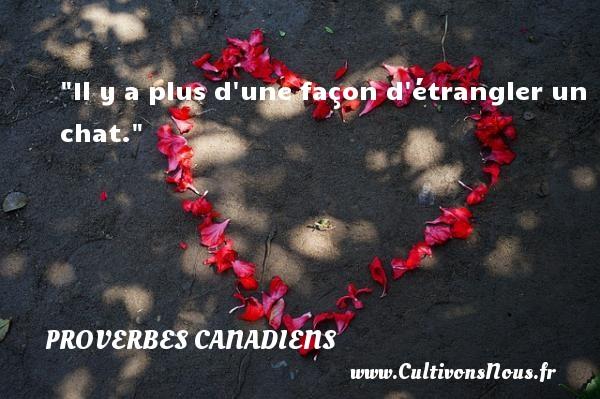 Il y a plus d une façon d étrangler un chat. Un Proverbe canadien PROVERBES CANADIENS - Proverbes philosophiques