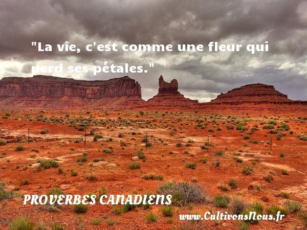 La vie, c est comme une fleur qui perd ses pétales. Un Proverbe canadien PROVERBES CANADIENS - Proverbes philosophiques
