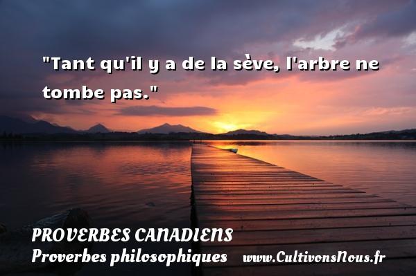 Tant qu il y a de la sève, l arbre ne tombe pas. Un Proverbe canadien PROVERBES CANADIENS - Proverbes philosophiques