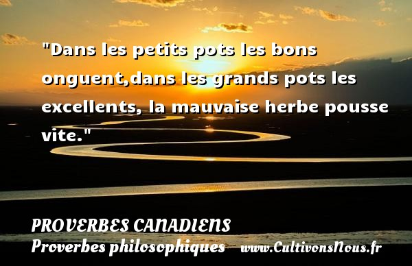 dans les petits pots les bons onguent dans les grands pots les excellents la un proverbe canadien