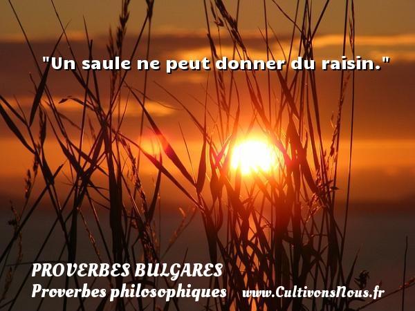 Un saule ne peut donner du raisin. Un Proverbe bulgare PROVERBES BULGARES - Proverbes philosophiques