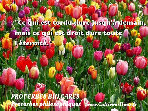Ce qui est tordu dure jusqu à demain, mais ce qui est droit dure toute l éternité. Un Proverbe bulgare PROVERBES BULGARES - Proverbes bulgares - Proverbe éternité - Proverbes philosophiques