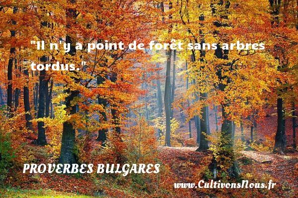 Il n y a point de forêt sans arbres tordus. Un Proverbe bulgare PROVERBES BULGARES - Proverbes philosophiques