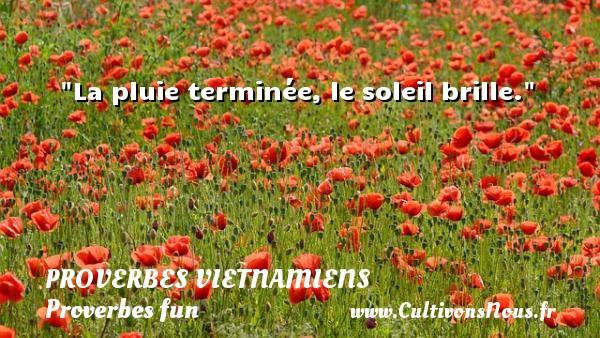 La pluie terminée, le soleil brille. Un Proverbe vietnamien PROVERBES VIETNAMIENS - Proverbes fun - Proverbes philosophiques