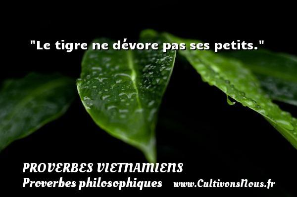 Proverbes vietnamiens - Proverbes philosophiques - Le tigre ne dévore pas ses petits. Un Proverbe vietnamien PROVERBES VIETNAMIENS