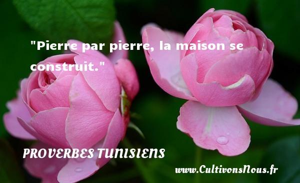 Pierre par pierre, la maison se construit. Un Proverbe tunisien PROVERBES TUNISIENS - Proverbes Drôles - Proverbes philosophiques