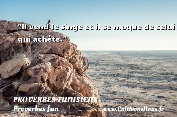 Il vend le singe et il se moque de celui qui achète. Un Proverbe tunisien PROVERBES TUNISIENS - Proverbes fun - Proverbes philosophiques