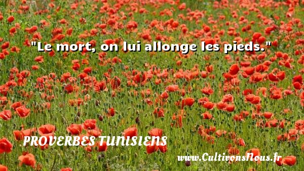 Le mort, on lui allonge les pieds. Un Proverbe tunisien PROVERBES TUNISIENS - Proverbes fun
