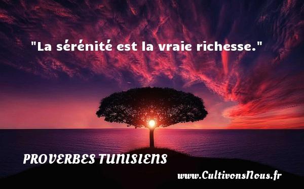 La sérénité est la vraie richesse. Un Proverbe tunisien PROVERBES TUNISIENS - Proverbes philosophiques