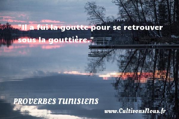 Il a fui la goutte pour se retrouver sous la gouttière. Un Proverbe tunisien PROVERBES TUNISIENS - Proverbes fun