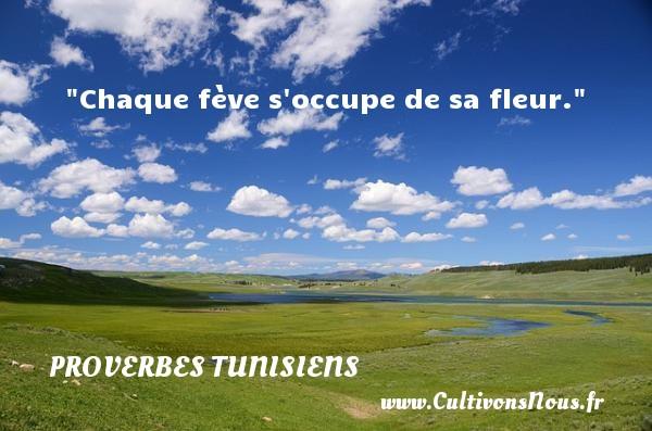 Chaque fève s occupe de sa fleur. Un Proverbe tunisien PROVERBES TUNISIENS - Proverbes philosophiques