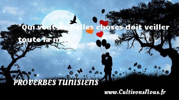 Qui veut de belles choses doit veiller toute la nuit. Un Proverbe tunisien PROVERBES TUNISIENS - Proverbes philosophiques