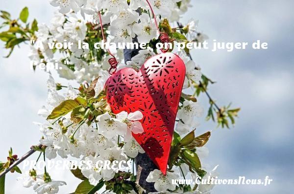 A voir la chaume, on peut juger de l'épi. Un Proverbe Grec PROVERBES GRECS - Proverbes philosophiques