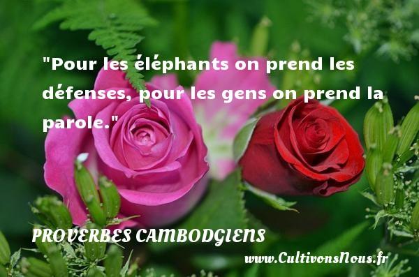 Proverbes cambodgiens - Proverbes connus - Pour les éléphants on prend les défenses, pour les gens on prend la parole.  Un Proverbe cambodgien PROVERBES CAMBODGIENS