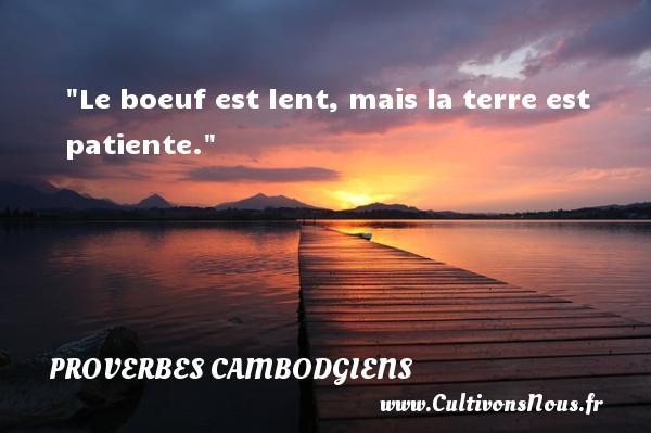 Le boeuf est lent, mais la terre est patiente. Un Proverbe cambodgien PROVERBES CAMBODGIENS - Proverbes philosophiques
