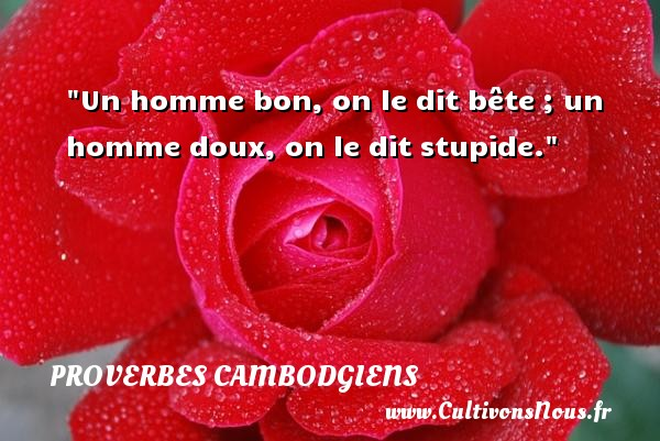 Proverbes cambodgiens - Un homme bon, on le dit bête ; un homme doux, on le dit stupide. Un Proverbe cambodgien PROVERBES CAMBODGIENS