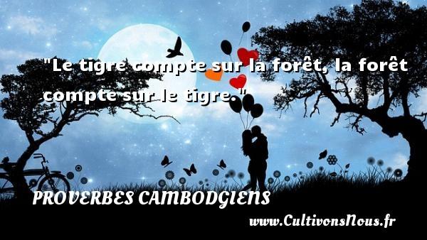 Proverbes cambodgiens - Le tigre compte sur la forêt, la forêt compte sur le tigre. Un Proverbe cambodgien PROVERBES CAMBODGIENS