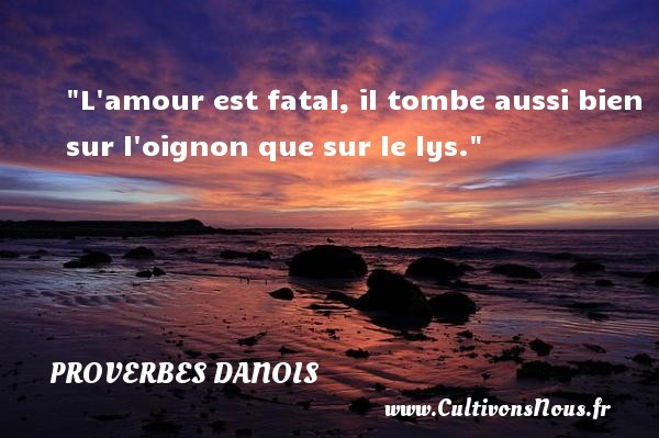 L amour est fatal, il tombe aussi bien sur l oignon que sur le lys. Un Proverbe danois PROVERBES DANOIS - Proverbes fun