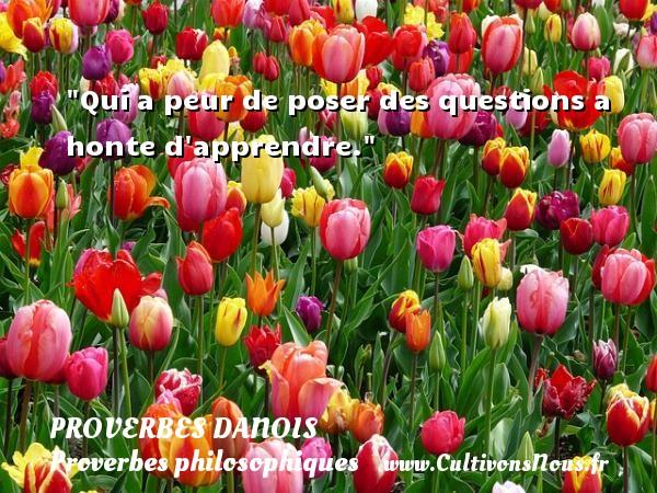 Qui a peur de poser des questions a honte d apprendre. Un Proverbe danois PROVERBES DANOIS - Proverbes philosophiques