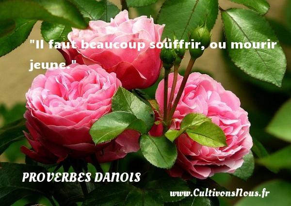 Il faut beaucoup souffrir, ou mourir jeune. Un Proverbe danois PROVERBES DANOIS
