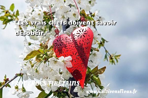 Les vrais chefs doivent savoir désobéir.  Un Proverbe tibétain PROVERBES TIBÉTAINS - Proverbes tibétains - Proverbes savoir