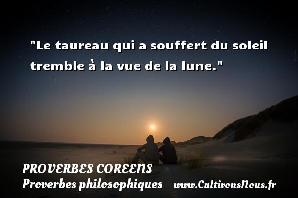 Proverbes coreens - Proverbes philosophiques - Le taureau qui a souffert du soleil tremble à la vue de la lune. Un Proverbe coréen PROVERBES COREENS