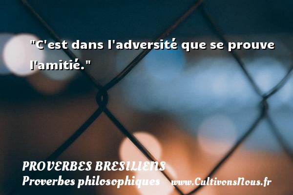 C est dans l adversité que se prouve l amitié. Un Proverbe brésilien PROVERBES BRESILIENS - Proverbes philosophiques