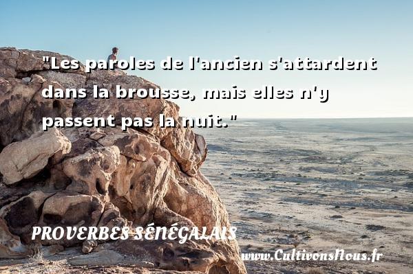 Les paroles de l ancien s attardent dans la brousse, mais elles n y passent pas la nuit. Un Proverbe sénégalais PROVERBES SÉNÉGALAIS - Proverbes sénégalais - Proverbes philosophiques