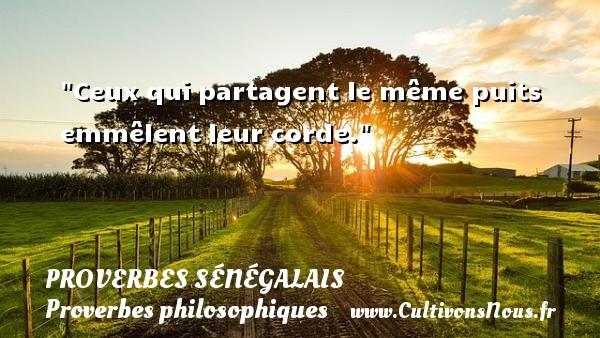 Ceux qui partagent le même puits emmêlent leur corde. Un Proverbe sénégalais PROVERBES SÉNÉGALAIS - Proverbes sénégalais - Proverbes philosophiques