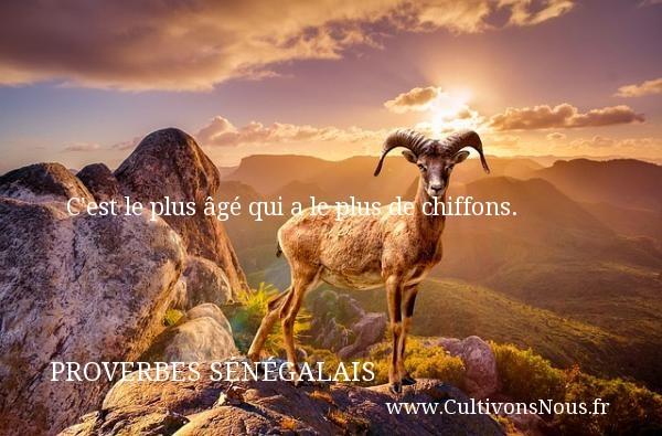 C est le plus âgé qui a le plus de chiffons. Un Proverbe sénégalais PROVERBES SÉNÉGALAIS - Proverbes sénégalais - Proverbes philosophiques